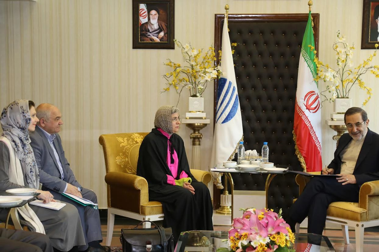 Meeting of Advisor to the RISS Director E.V. Suponina and senior advisor to the Supreme Leader of Iran Ali Akbar Velayati